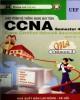 Giáo trình Hệ thống mạng máy tính CCNA (Tập 4): Phần 1