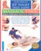 Ebook Kỹ thuật thực hành massage y học phục hồi sức khỏe và thư giãn: Phần 2