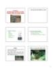 Bài giảng Nguyên lý thiết kế cảnh quan - Chương 3: Những đối tượng cơ bản trong thiết kế cảnh quan