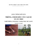 GT mo dun 03 - Trong, cham soc cao su