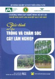 Giao trinh trong va cham soc cay lam nghiep