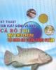 Ebook Kỹ thuật sản xuất giống và nuôi cá rô phi đạt tiêu chuẩn vệ sinh an toàn thực phẩm - NXB Nông nghiệp