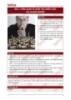 Bài giảng Quản trị chiến lược: Bài 1 - Tổ hợp GD TOPICA