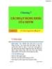 Bài giảng Nghiệp vụ ngân hàng: Chương 7 - Ths.Nguyễn Lê Hồng Vy