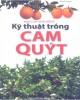 Ebook Bạn của nhà nông - Kỹ thuật trồng cam, quýt: Phần 1 - Thanh Huyền