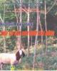 Ebook Kỹ thuật nuôi trồng một số cây con dưới tán rừng - TS. Võ Đại Hải (chủ biên)