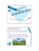 Bài giảng Sinh học đại cương: Chương 8 - GV. Nguyễn Thành Luân