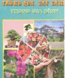 Ebook Trồng hoa trồng cây cảnh trong gia đình: Phần 1 - TS. Nguyễn Huy Trí, TS. Đoàn Văn Lư