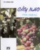 Ebook Cây nho: Phần 2 - Vũ Công Hậu