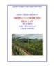 Giáo trình Trồng và chăm sóc hoa lan - MĐ03: Trồng hoa lan