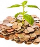 Chương trình giảng dạy Kinh tế Fulbright - Bái 6: Phân tích tài chính - Nguyễn Minh Kiều