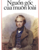 Ebook Nguồn gốc của muôn loài -  Charles Darwin (Ngọc Linh dịch)