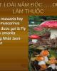 Bài giảng Sinh học và kỹ thuật trồng nấm - Bài: Độc tố nấm
