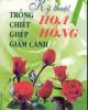 Ebook Kỹ thuật trồng - chiết - ghép - giâm cành hoa hồng: Phần 2 - Việt Chương, Lâm Thị Mỹ Hương