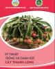 Ebook Kỹ thuật trồng và chăm sóc cây thanh long