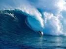 Giáo trình Kỹ thuật biển - Tập 2: Những vấn đề cảng và bờ biển