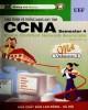 Giáo trình Hệ thống mạng máy tính CCNA semester 4: Phần 1 - NXB Lao động Xã hội