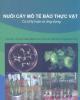 Giáo trình Nuôi cấy mô tế bào thực vật: Cơ sở lý luận và ứng dụng
