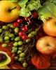 Giáo trình Quản lý và kiểm tra chất lượng thực phẩm: Phần 1