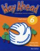 Ebook Way ahead pupil's Book 6 - A foundation course in English: Phần 1