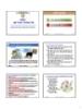 Bài giảng Tin học đại cương - Chương 7: An toàn thông tin