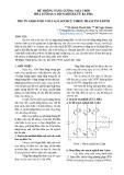 Hệ thống năng lượng mặt trười hòa lưới qua bộ nghịch lưu ba pha