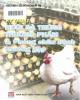 Ebook Kỹ thuật phòng và chữa bệnh thường gặp trong nuôi gà trứng thương phẩm: Phần 1