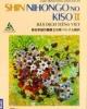 Giáo trình Shin nihongo no kiso II