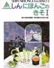 Giáo trình Shin nihongo no kiso I