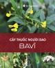 Ebook Cây thuốc người Dao Ba Vì: Phần 1