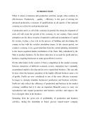 Gradute thesis: Profits and profit enhancement solutions at TOCONTAP Sundries Import Export Company