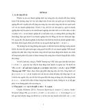 Khóa luận tốt nghiệp: Phân tích và đề xuất một số giải pháp cải thiện tình hình tài chính công ty TNHH Thương mại VHC