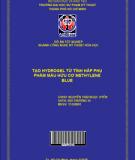 Tạo Hydrogel từ tính hấp thụ phẩm màu hữu cơ methylene blue