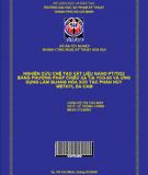 Nghiên cứu chế tạo vật liệu Nano Pt/TiO2 bằng phướng pháp chiếu xạ tia yCo-60 và ứng dụng làm quang hóa xúc tác phân hủy Methyl da cam