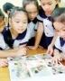 Module Tiểu học